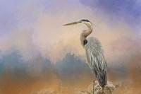 Heron On The Rocks Fine Art Print