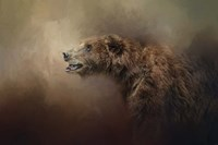 Morning Grizzly Fine Art Print