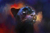 Colorful Expressions Black Leopard Fine Art Print