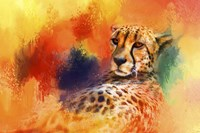 Colorful Expressions Cheetah Fine Art Print