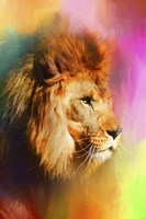 Colorful Expressions Lion Fine Art Print