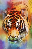 Colorful Expressions Tiger Fine Art Print