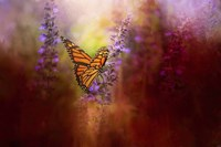 Autumn Monarch Fine Art Print