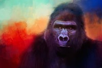 Colorful Expressions Gorilla Fine Art Print