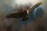 The Raptors Arrival Fine Art Print