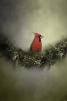 Waiting On Christmas Fine Art Print