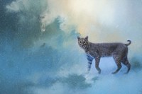 Winter Bobcat Fine Art Print