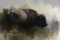 Abstract American Bison Fine Art Print
