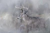 Meeting Winter Head On Fine Art Print
