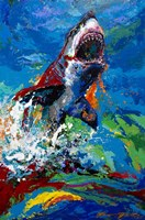 The Lawyer Breeching Great White Shark Fine Art Print