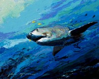 The Mighty Bull Shark Fine Art Print