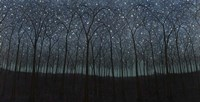 Starry Trees Fine Art Print