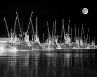 Shrimp Boats Asleep Fine Art Print
