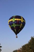 Air Balloon Fine Art Print