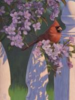 Crimson Evening Fine Art Print