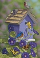 Primarys Butterflies Fine Art Print