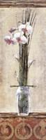 Zen Orchid Ii Fine Art Print