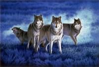 Blue Legend Fine Art Print