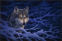 Deep Blue Fine Art Print