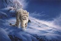 In Snowstorm Fine Art Print