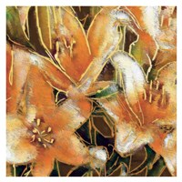 Apricot Dream II Fine Art Print
