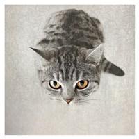 Hello Kitty Fine Art Print