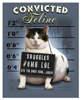 Convicted Feline Fine Art Print