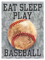 Eat Sleep Play Baseball Fine Art Print