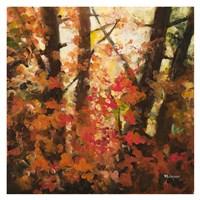 Backlit Leaves II Fine Art Print