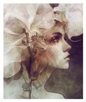 Petal Fine Art Print