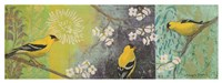 Goldfinches Blooming Fine Art Print
