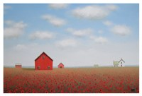 Long Poppy Farm Fine Art Print