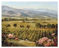 Vineyards to Vaca Mountains Fine Art Print