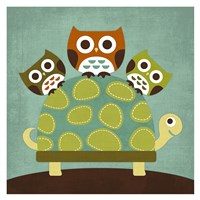 Three Owls on Turtle Fine Art Print