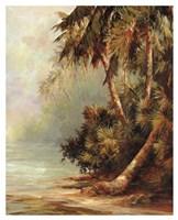 Hidden Cove Fine Art Print