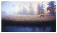 Morning Splendor Fine Art Print