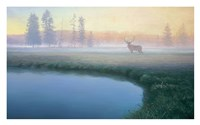 Yellowstone Mist Fine Art Print