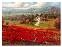 Poppy Fields Afar Fine Art Print