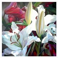 Ruffles & Trim Fine Art Print