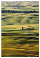 Palouse #27 Fine Art Print