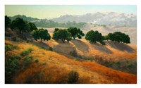 Summer in the Hills Fine Art Print