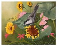 Chickadee & Sunflowers Fine Art Print