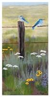 Mountain Blue Birds Fine Art Print