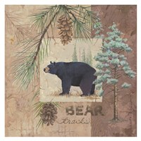 Bear Tracks Fine Art Print