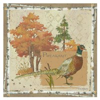 Pheasant Postcard Fine Art Print