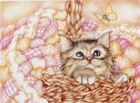 Pinkie Fine Art Print