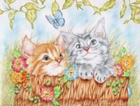 Watching Kittens Fine Art Print