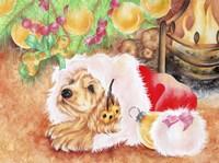 Puppy's Gift Fine Art Print