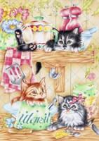 Kitty Kitchen Fine Art Print