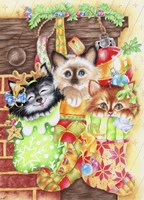 Stocking Fillers Kitten Fine Art Print